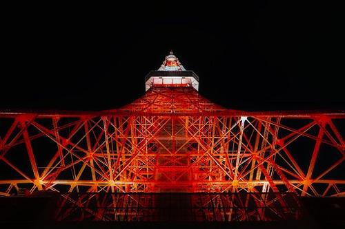 東京 セミ 鳴き始め 夜 減少