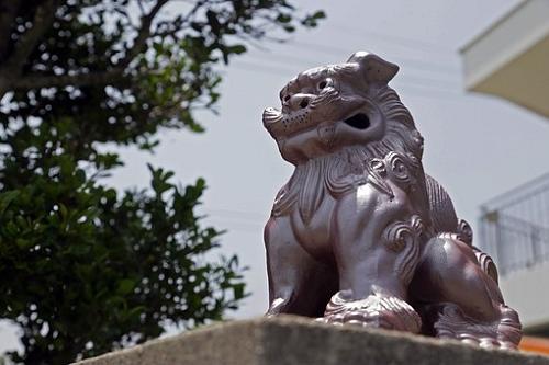 ① セミ 食べる 沖縄 中国