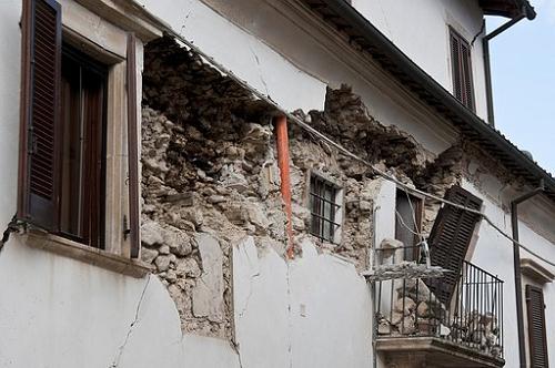 セミ 夜 鳴く 地震