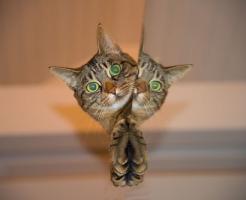 猫 セミ 食べる 大丈夫