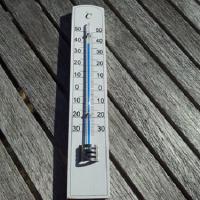 セミ 鳴かない 気温 温度