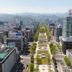 北海道のセミは、いつ頃鳴く?5月6月8月は?