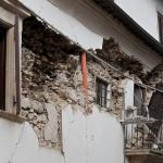 セミが夜に鳴くのは地震の前兆?